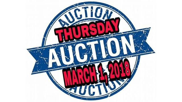 Slocomb Police Department to Hold Public Auction
