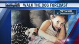 Walk the Dog Forecast Starring Zoey and Mini